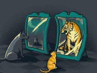 Самооценка