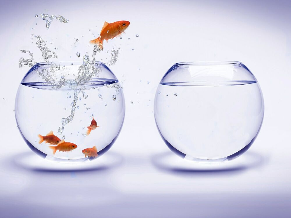 Амбиции — это уровень устремленности человека, высота поставленных самому себе целей, а также твердость в достижении результатов - профессиональных, семейных, материальных и других.